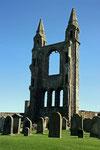 Die Kathedrale von St. Andrew´s  war einst das größte Gotteshaus Schottlands.