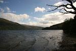 """Seit 2002 ist Loch Lomond Teil des Nationalparks """"Loch Lomond and the Trossachs""""."""