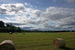 Landschaft nahe Cawdor (Highlands).