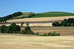 Die Lanschaft in der Grafschaft Fife ist sehr landwirtschaftlich geprägt.