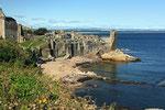 Von der Kathedrale aus hat man einen schönen Blick auf die Burgruine und St. Andrew´s Bay.