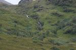 Landschaft auf der Fahrt nach Mallaig (Highlands).