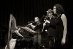 Musiques à Ouir © Emmanuelle Vial 2013