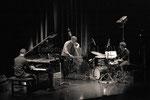 Jean-Philippe Viret Trio © Emmanuelle Vial 2011