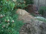 Drechselspäne Kompostplatz mit Alexanderbirnen