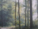 """Northern Forest"" 16x20 $1700 oil on canvas"