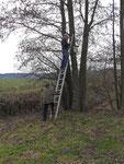 Eine Sicherung der Leiter ist sinnvoll.
