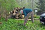 Der alte Zaun an der Pferdekoppel im Burwald Dinklage war nicht mehr ansehlich und muss erneuert werden. Foto: Josef Taphorn
