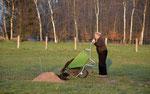 Wie erwähnt, der Kompost, biologisch vor Ort erstellt, unterstützt das Anwachsen der Bäume. Foto: Taphorn