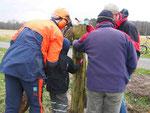 Unter fachmännischer Anleitung wird die Hammerlänge am Eckpfosten angezeichnet. Foto: Claudia Kellermann