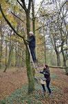 Naturschützer wachsen nicht an Bäumen, darum sichern wir den Aufstieg. Foto: Josef Taphorn