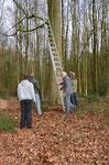 Leiter angelehnt und gesichert und ...Foto: Josef Taphorn