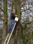 Aus Fichtenholz in ausreichender Größe gefertigt, werden die Kästen an geeigneten Stellen aufgehängt.