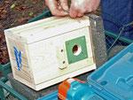 Hier gut zu erkennen, der Spechtschutz und die spezielle Methode beim Aufhängen. Das Querholz ist entbehrlich.   Foto: Josef Taphorn