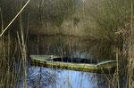 Auch hier wartet noch einiges an Arbeit auf uns, der Teich bekommt kaum noch Licht.     Foto: Josef Taphorn