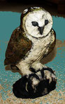 barn owl with mouse ( raku )