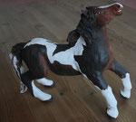 horse pinto (engobe)