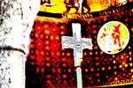 Dezember - Christine Danninger - Im Zentrum des Kreuzes