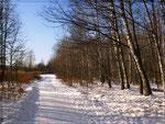 В зимнем парке (1)