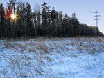 Зимний вечер на просеке