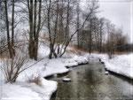 Грёзы зимней реки (4)