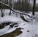Косинский ручей