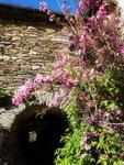 Gite de liou- Cévennes - Le porche
