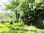 Gite de liou - Cévennes - La boîte aux lettres