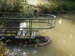 Der Überlauf sorgt für einen gleichmäßigen Wasserstand im Teich.