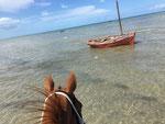 Der Strand von Vilankulo (Mosambik). Ebbe und Flut wechseln sich ab.
