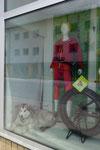 Komische Schaufensterdeko haben die hier in Nordnorwegen oder gibts hier Schlittenhunde zu kaufen?