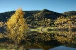Herbst im Numedal