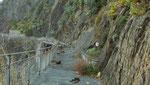 Die berühmte Via del `Amore bei Manarola, von dieser Stelle an war der Sentiero chiuso