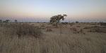 Umgebung der Kalahari Red Dune Lodge