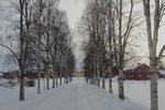 Zufahrt zu unserer Unterkunft, dem Bioforsk Svanhovd Nationalpark Center