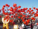 Dekoration für miao hui