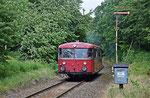 Neben der V 100-bespannten Reichsbahngarnitur kam als zweiter Zug der ehemalige Bundesbahntriebwagen 796 625-0 zum Einsatz. Am 24. Juni 2018 fährt das Fahrzeug von Berthelsdorf nach Brand-Erbisdorf. Foto: Felix Bochmann