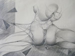 Ohne Titel, 1999. Grafit auf Zeichenkarton, 70 x  50 cm