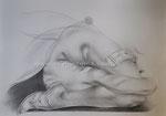 Schlangenmensch, 2011. Grafit auf Zeichen karton, 100 x 70 cm