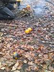 mhhhhh, warme Orangen