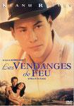 """""""Les vendanges de feu"""" (1995) par MyLoveQ"""