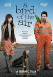 """""""A bird of the air"""" (2012) par LoveMachine."""