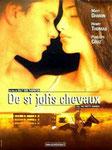 """""""De si jolis chevaux"""" (2001) par LoveMachine."""