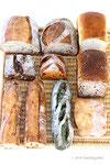 第3回みんなでパンを楽しむ会*シニフィアン・シニフィエ(東京都世田谷区)
