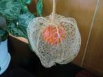 朱赤の実が籠に包摂