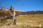 Valle Cicerana - Parco Nazionale d'Abruzzo Lazio e Molise