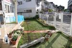 令和2年春 西日の園庭