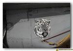 Un tigre slovaque sur MiG-29