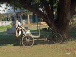 Un Rickshaw (pousse-pousse)