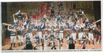 Herrensitzung der KG Lätitia von 1878 Blaue Funken Artillerie Weisweiler e. V. (2013)